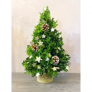 Starry Night Boxwood Tree
